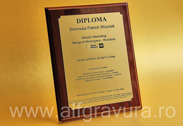 Diploma gravata pe suport lemn