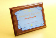 Plachete personalizate oglinda albastra
