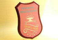 Placa gravata pe scut din lemn
