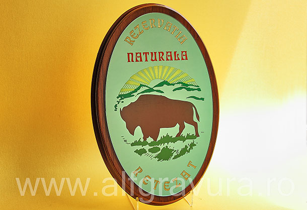 Placa ovala lemn - placa gravata oglinda verde