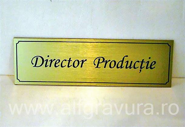 Placa gravata Director