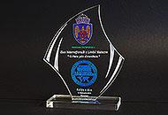 Trofee acril personalizate