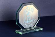 Trofee sticla octogonale 1